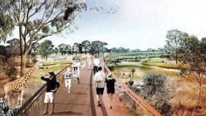 Drones au zoo de Sydney